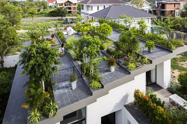 Green roof หลังคาลดร้อน
