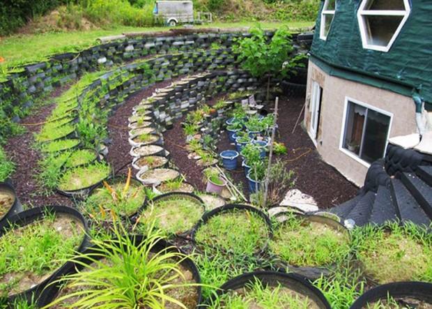 สวนผักในยางรถยนต์