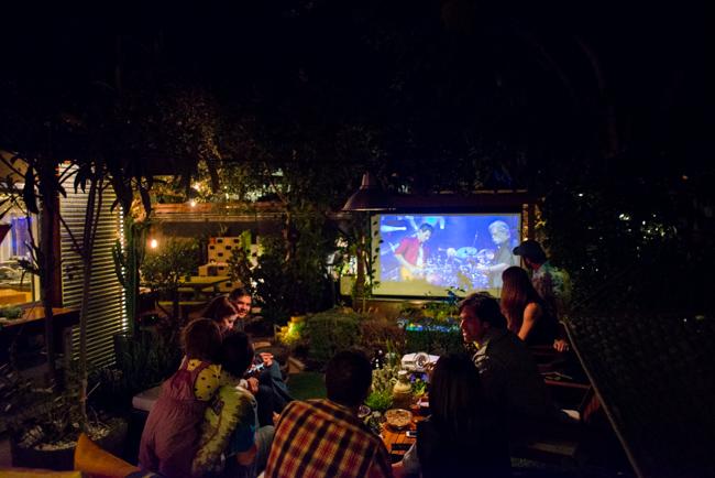ชม concert ในสวน