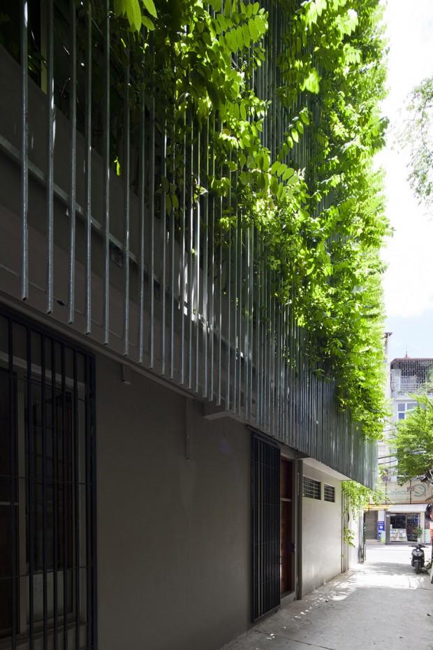 Facade โครงเหล็กปลูกต้นไม้เลื้อย