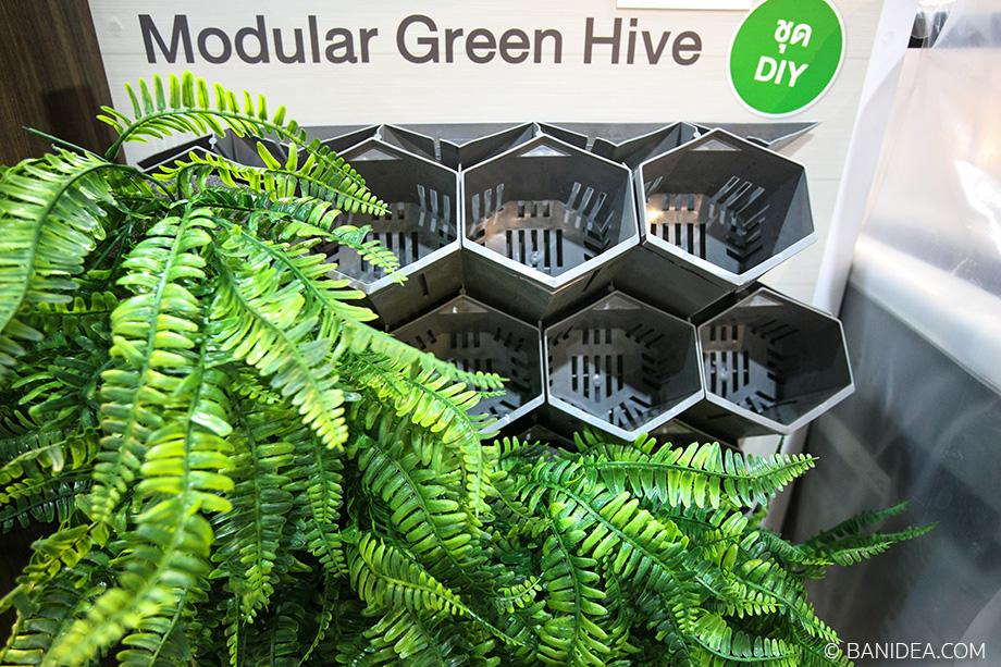 ชุดจัดสวนแนวตั้ง Modular Green Hive DIY