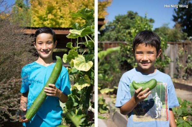 เด็ก ๆ เก็บผักจากแปลงปลูกในบ้าน