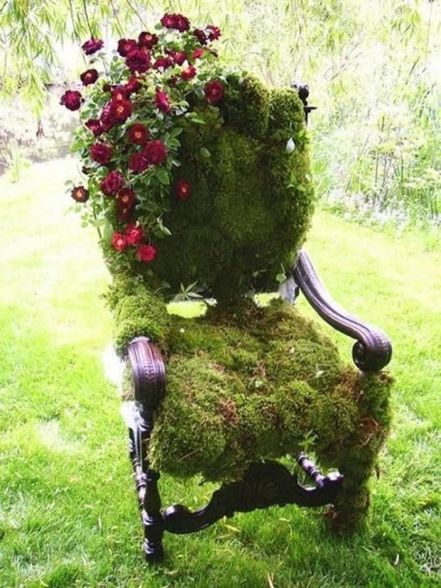 ปลูกมอสบนเก้าอี้เก่า