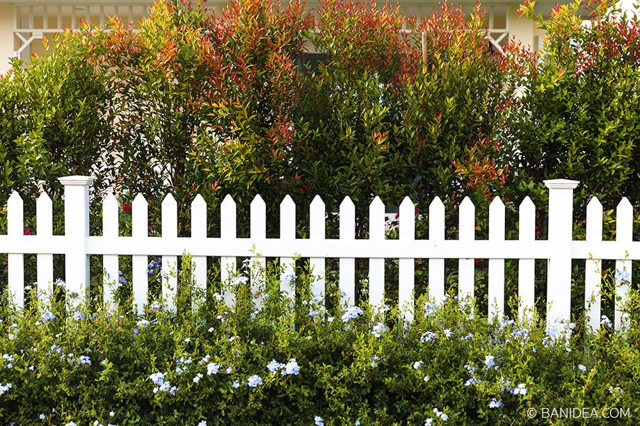 รั้วไวนิล รั้วต้นไม้