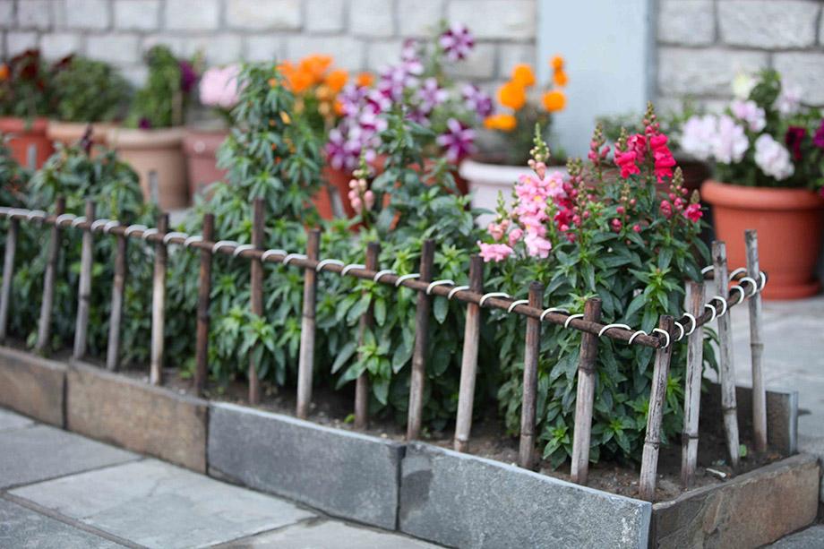 รั้วไผ่เล็ก ๆ ในแปลงดอก