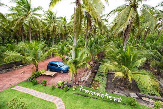 บ้านสองชั้นกลางสวนมะพร้าว