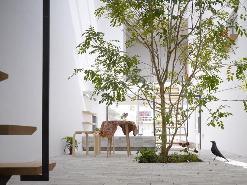 จัดพื้นที่เปิดปลูกต้นไม้ในบ้าน