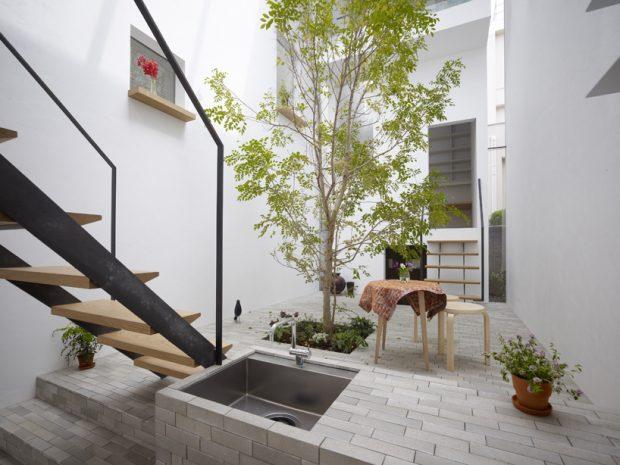 ปลูกต้นไม้กลางบ้าน