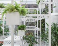 สวนแนวตั้งปลูกต้นไม้ที่ช่วยซับมลพิษ