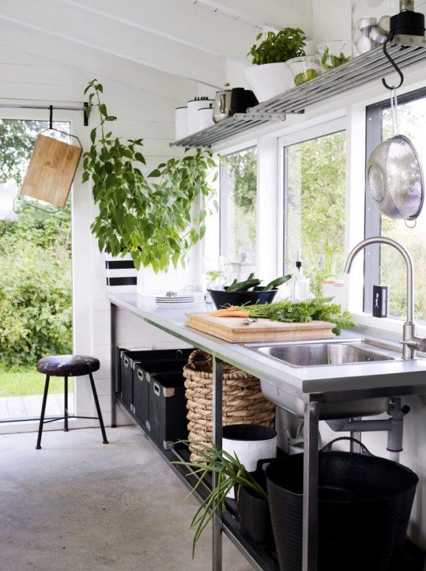 ปลูกผักไว้ในบ้าน