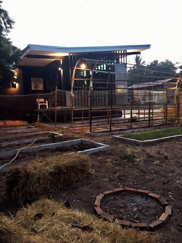 สวนครัวหลังบ้าน