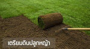 เตรียมดินปลูกหญ้า