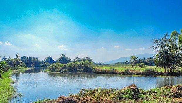วิวธรรมชาติในหมู่บ้าน