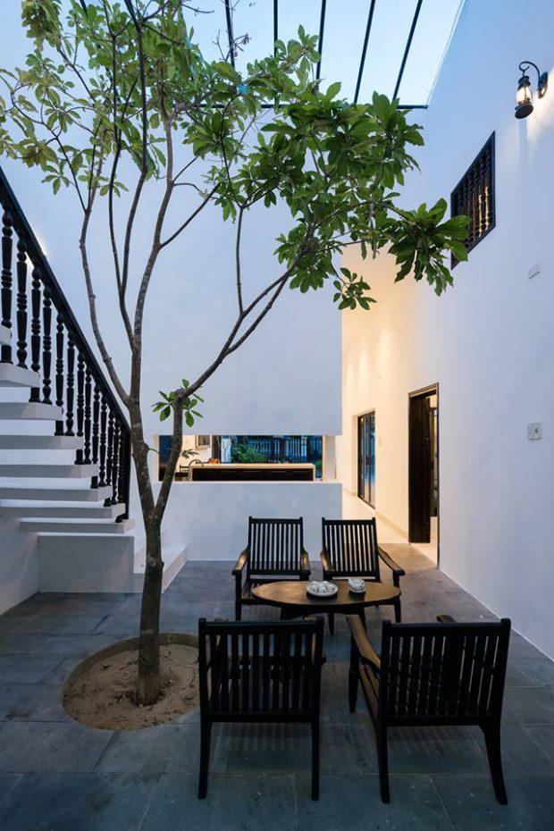 ปลูกต้นไม้ในตัวบ้าน