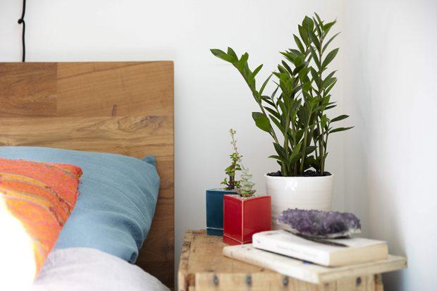 ปลูกต้นไม้ในห้องนอน