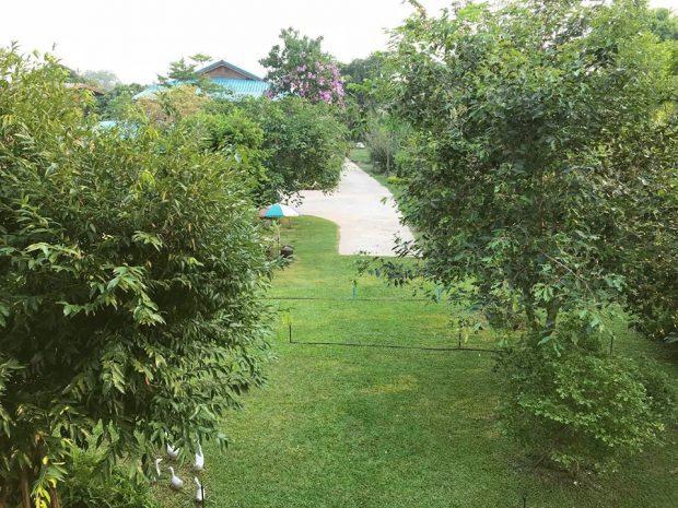 มุมมองสวนจากชั้น 2
