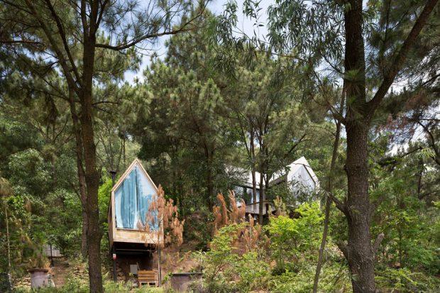 Forest-House บ้านต้นไม้
