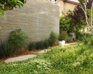 สวนข้างบ้าน