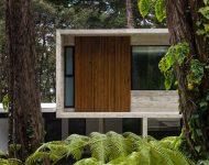 บ้านคอนกรีตปนไม้
