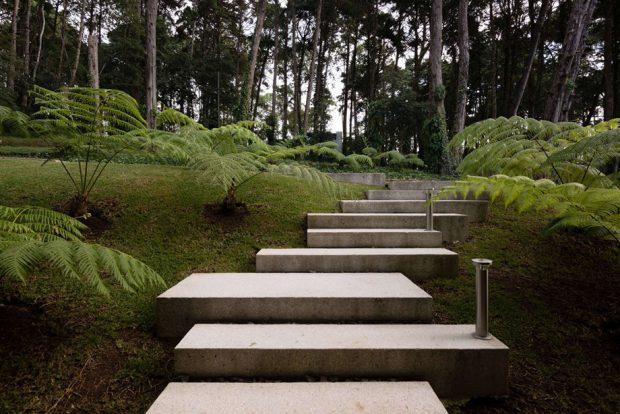 ทางเดินคอนกรีตในสวน