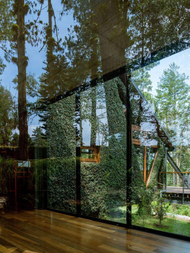 ผนังกระจกมองเห็นวิวธรรมชาติ