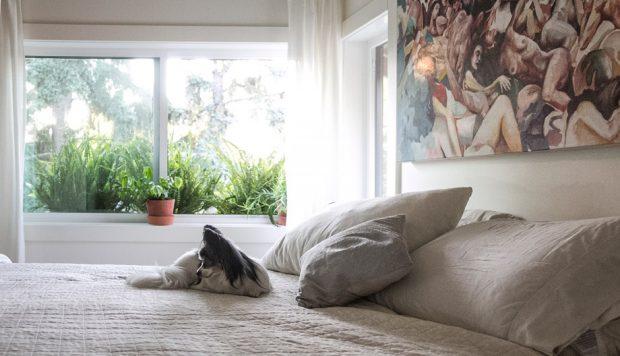 ห้องนอนสว่างและสดชื่น
