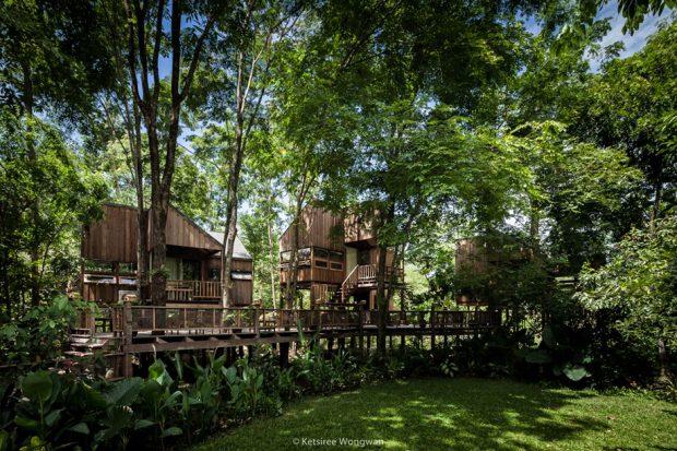 บ้านไม้ยกสูงกลางป่า