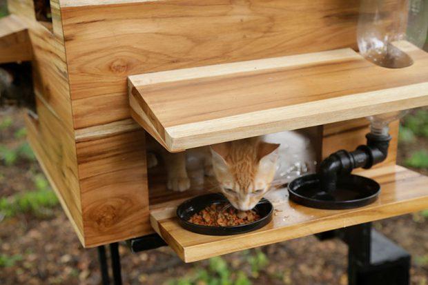 ที่วางจานอาหารสัตว์มีกันสาด