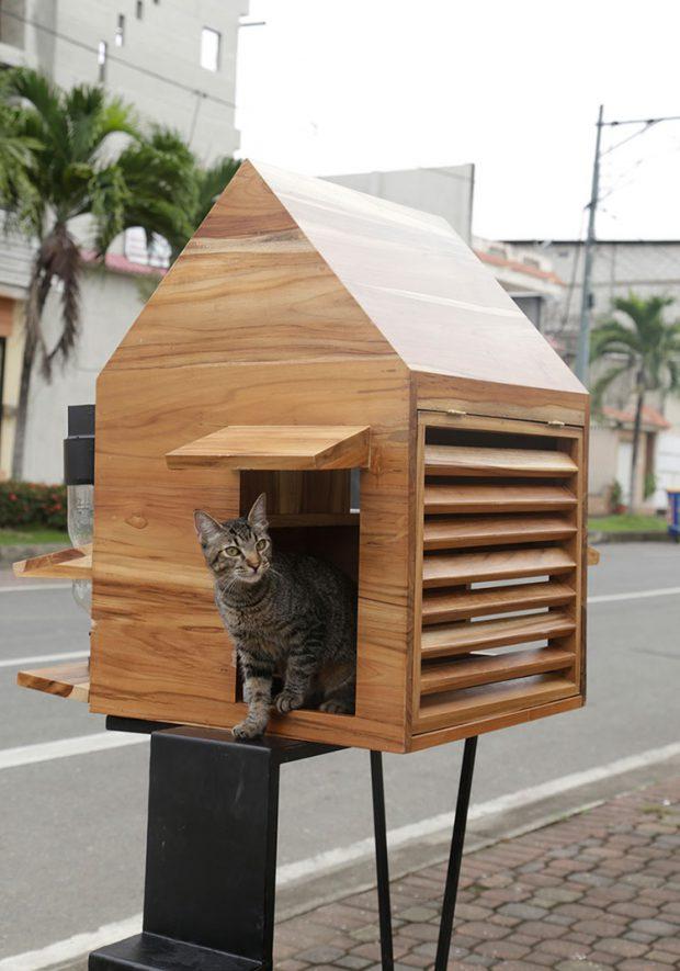 บ้านแมวมีช่องระบายอากาศ