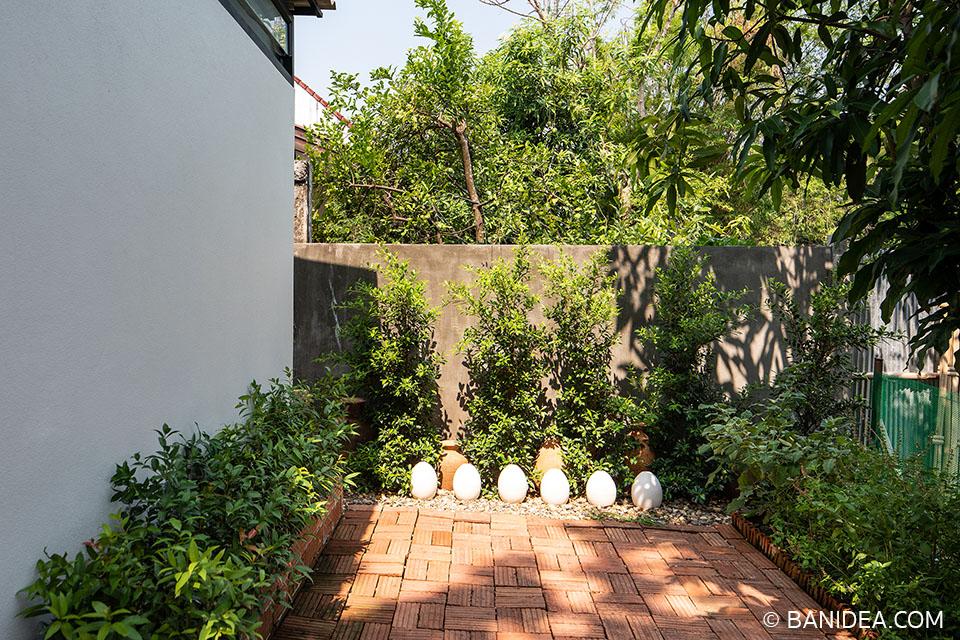 สวนหลังบ้าน