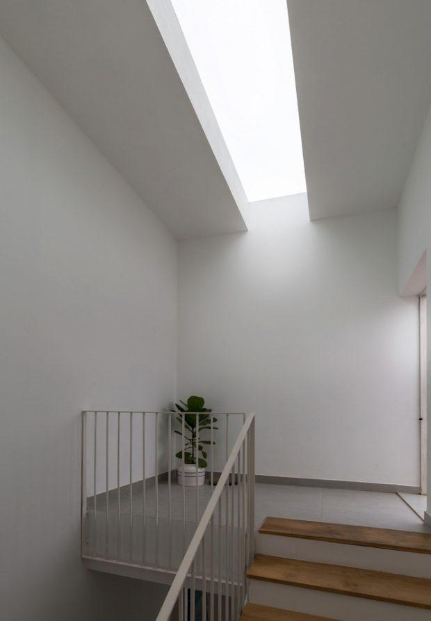 ช่องแสงสกายไลท์