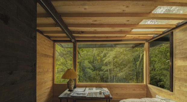 ห้องนอนช่องแสงใหญ่มองเห็นต้นไม้