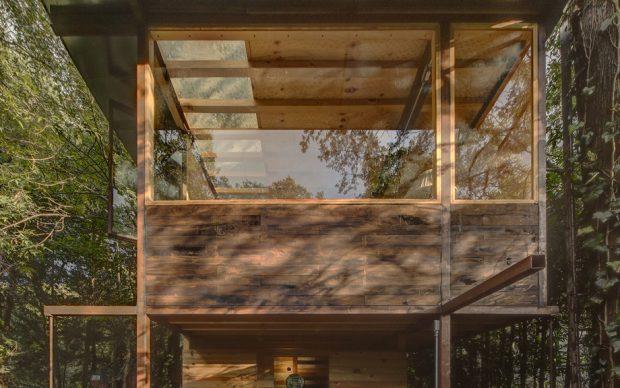 บ้านต้นไม้ผนังกระจก