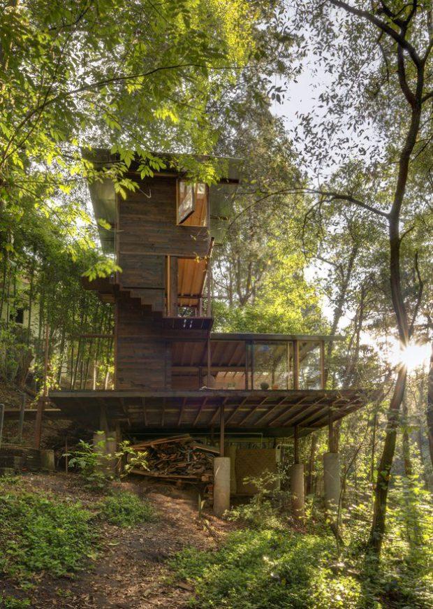 บ้านต้นไม้ใจกลางป่า