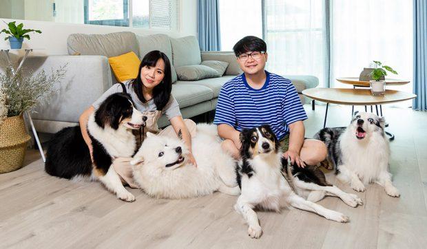 บ้านของคนและน้องหมา