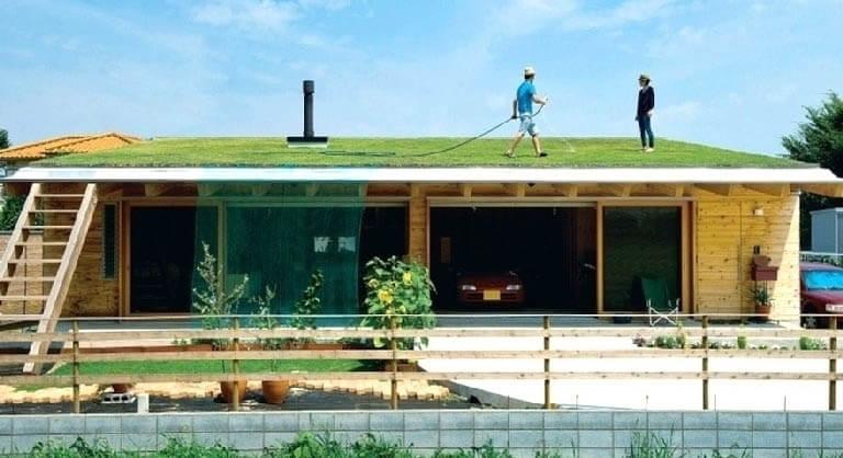 ปลูกหญ้าบนหลังคา