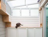 จัดพื้นที่ข้างบ้านเป็นกรงแมวขนาดใหญ่