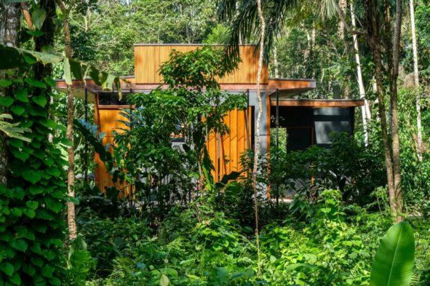 บ้านไม้โมเดิร์นกลางธรรมชาติ