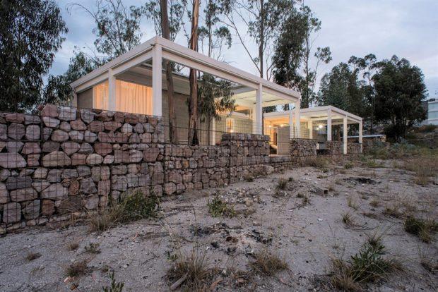 บ้านเจาะหลังคาให้ต้นไม้โต