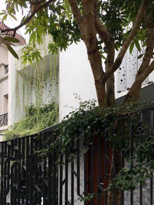 ปลูกต้นไม้ริมรั้วและระเบียง