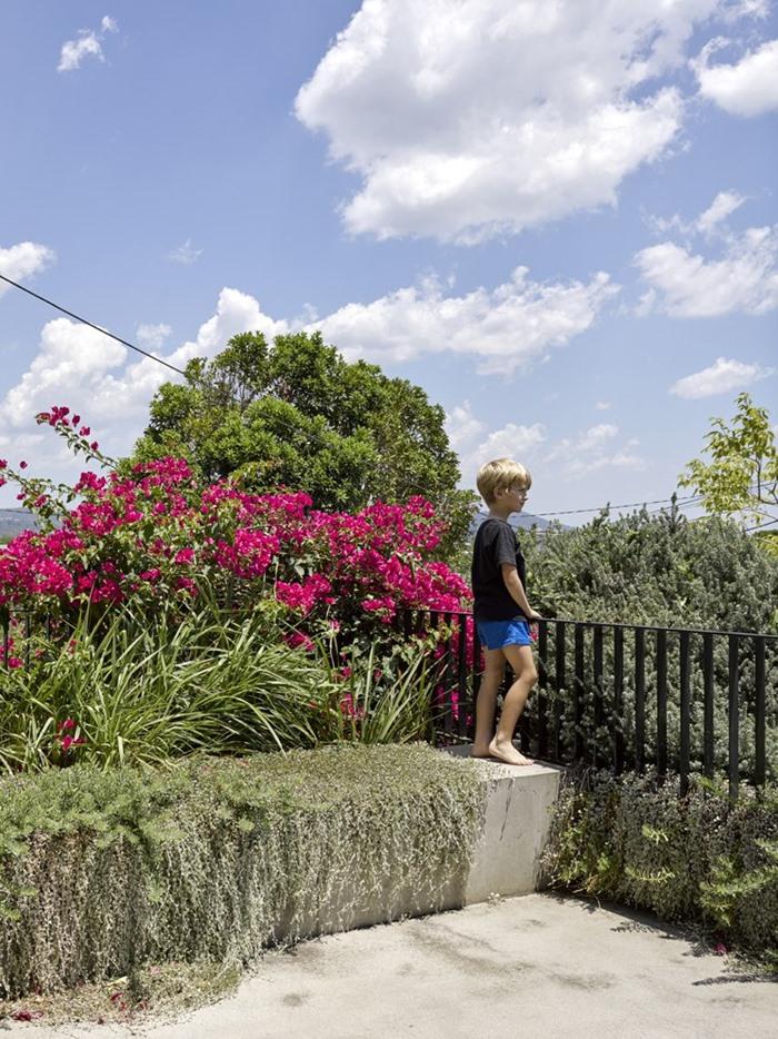 สวนบนหลังคา