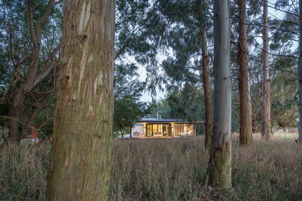 บ้านโมเดิร์นกลางธรรมชาติ