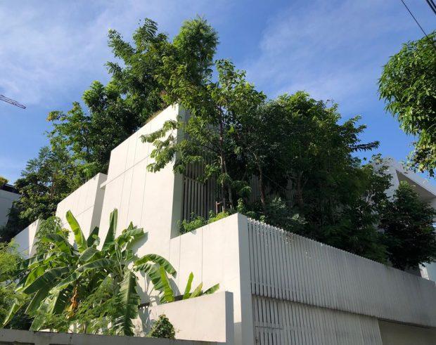 บ้านโมเดิร์นฟาซาดต้นไม้