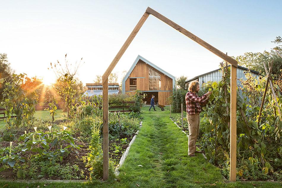 จัดสวนผัก Modern Barn