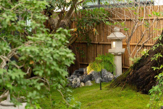 สวนญี่ปุ่นปลูกมอสคลุมดิน