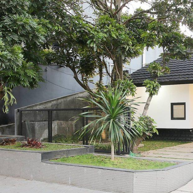 สวนเล็ก ๆ หน้าบ้าน