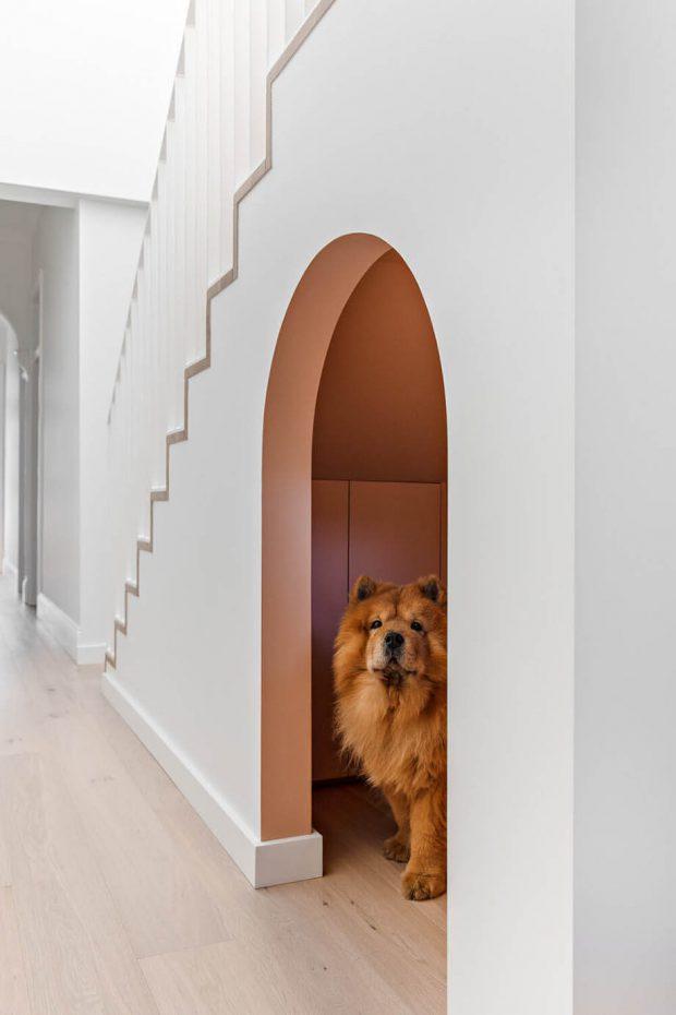 ทำบ้านหมาใต้บันไดบ้าน