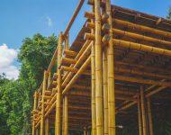 โครงสร้างไม้ไผ่