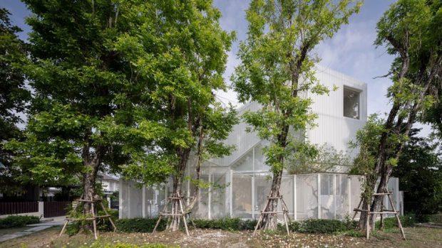 บ้านสีขาวมีแนวต้นไม้บังแสง