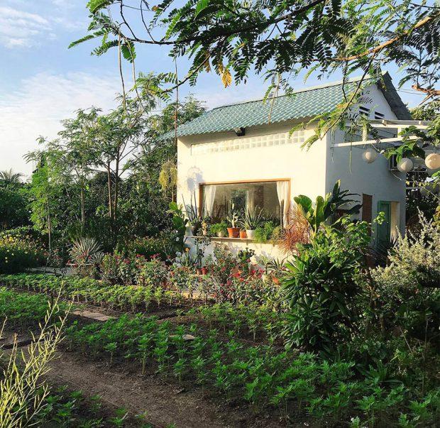 บ้านในสวนดอกไม้